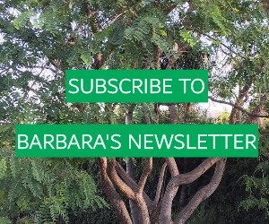 Barbara Jaffe Subscription